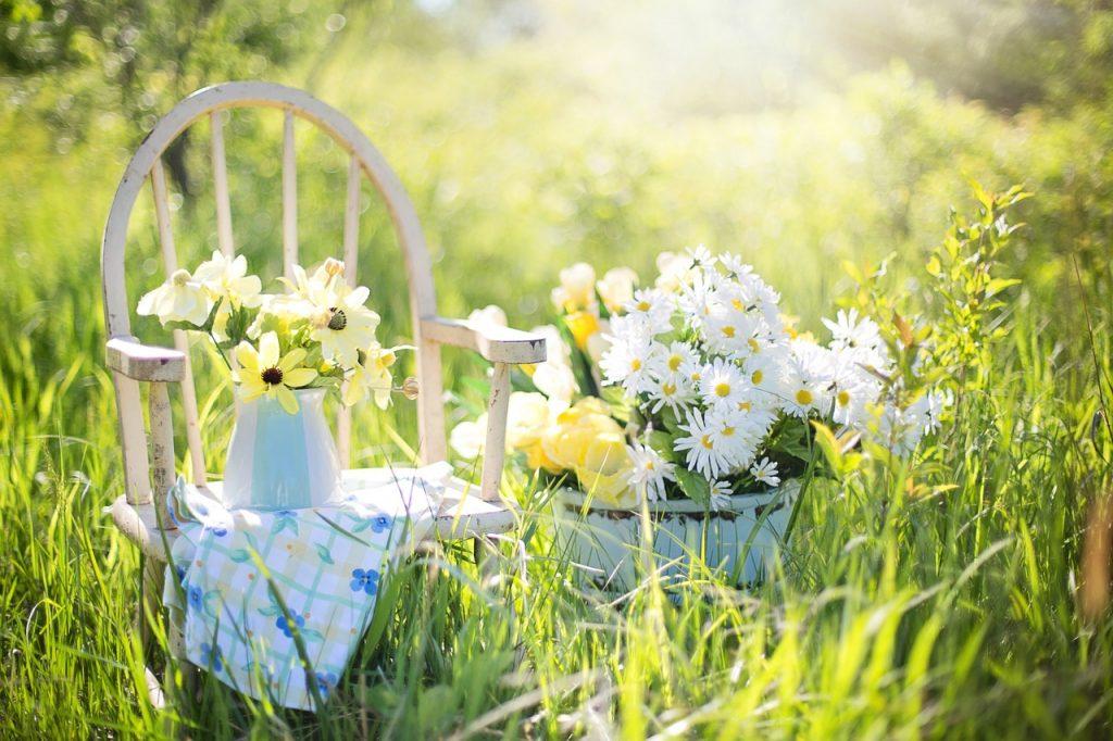 summer-still-life-779386_1280