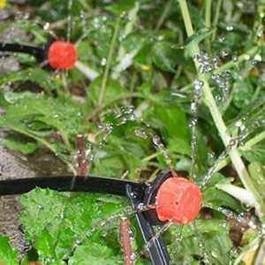 Come funziona irrigazione gocce