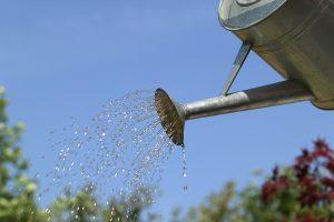 L'irrigazione non è solo per i mesi estivi.