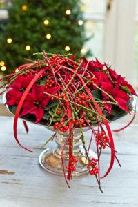 Stelle di Natale: decora tavola natalizia 3